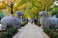 Nanjing Attractions Guide