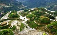 Longsheng Rice Terrace, Longji Terraced Fields, Longsheng Rice Terrace Guide, Longji Terraced Fields Guide,