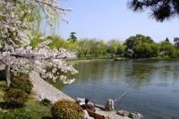 Xuanwu Lake, Xuanwu Lake Guide, Xuanwu Lake Travel Tips, Xuanwu Lake Travel Information.