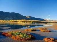 Weather & Climate in Lhasa, Lhasa Climate & Weather, Lhasa Climate & Weather Guide, Lhasa Climate & Weather Information.