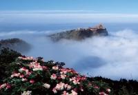 Mount Emei, Mount Emei Guide, Mount Emei Travel Tips, Mount Emei Information.