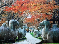 Ming Xiaoling Mausoleum, Ming Xiaoling Mausoleum Guide, Ming Xiaoling Mausoleum Travel Tips, Ming Xiaoling Mausoleum Travel Information.