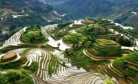 Longsheng Rice Terrace, Longji Terraced Fields, Longsheng Rice Terrace Guide, Longji Terraced Fields Guide,